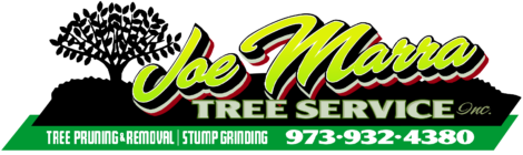 Joe Marra Tree Service